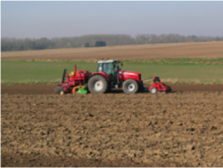 Agriculture arleux
